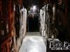darkzone17_HAAShow_2013_-_Photo_by_DesignByAly.com